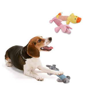 Pet Plush Chew Toys pictures & photos