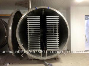 Food Vacuum Freeze Dryer Machine pictures & photos