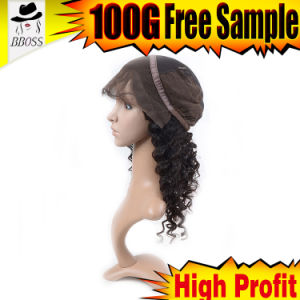 Indian Full Lace Wigs Curly Free Shipping Free Sample pictures & photos