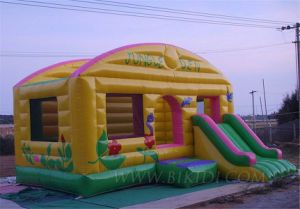 Inflatables Combo Bouncer, Moon Walks with Slide (B3026) pictures & photos