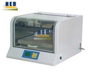 Shaking Incubator (THZ-300C) pictures & photos