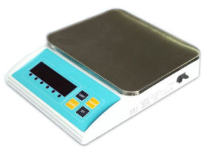 Waterproof Electronic Weighing Scale (ACS-6-ZX02W) pictures & photos
