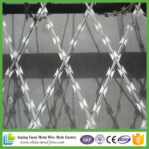 Double Twist Hot Dipped Galvanized Barbed Wire pictures & photos