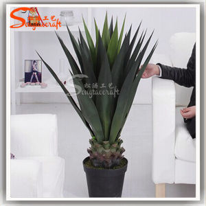 Plastic Product Agave Sisalana Artificial Bonsai Plants pictures & photos