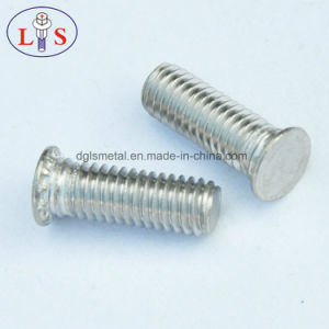 Ss304 Screw/Stainless Steel Self-Clinching Screw pictures & photos