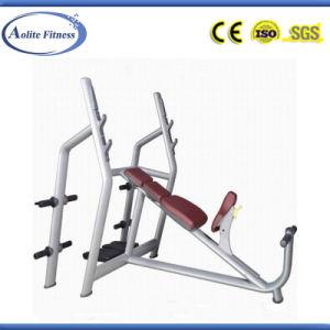 Big Bearing Incline Gym Bench (ALT-9024B) pictures & photos