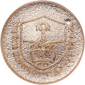 Hard Enamel Award Metal Lapel Pin with Custom Design