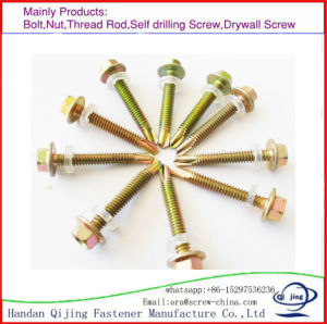 Hex Head Self Driling Screw, Sck Self Driling Screw, pictures & photos