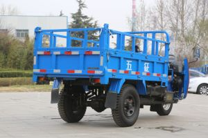 Waw Diesel Dump Right Hand Drive Tricycle From China for Sale pictures & photos