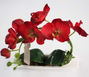 New Arrivals Red Butterfly Orchid Flower Artificial Bonsai with Vase pictures & photos