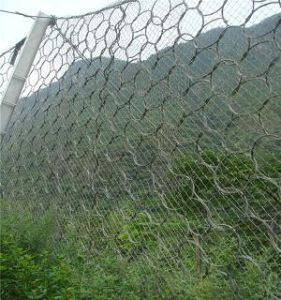 Steel Wire Rope Flexible Protective Netting (R-SNS) pictures & photos