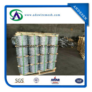 Heavy Zinc Coating Galvanized Barbed Wire pictures & photos