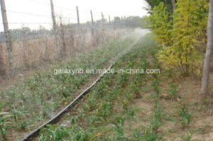 High Quality Hose Micro Spray Zone Gr09 pictures & photos