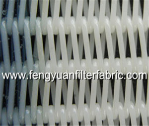 Large Loop Polyester Spiral Fabrics pictures & photos
