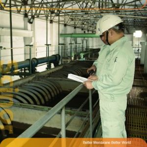Golden Service of Membrane Product (project support) pictures & photos