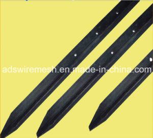 Factory Hot Sale Black Bitumen Star Picket for Australia Market pictures & photos