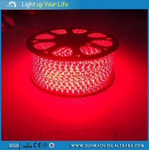 Garden Decoration Light LED Flexible Strip pictures & photos