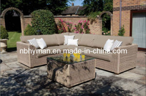 Garden Furniture (FSS-1621)