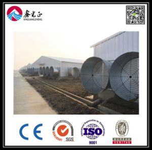 Light Steel Strucutre Chicken House (BYCH-005) pictures & photos