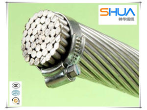 0.6/1kv ACSR Bare Conductor/Bare AAC Cable/Aluminum Conductor pictures & photos