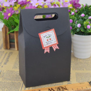 Shopping Paper Bags /Promotional Paper Handbags/Handle Gift Carrier Bags Pb-020 pictures & photos