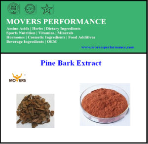 Pure Natural Pine Bark Extract Proanthocyanidins 95% pictures & photos