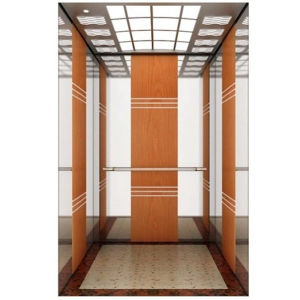Passenger Elevator Price with High Quality pictures & photos