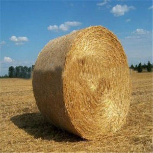 Plastic Bale Nets Wrap for Agriculture and Farms pictures & photos