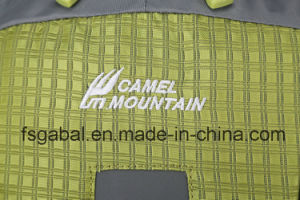 Camel Mountain Climbing Travel Trekking Outdoor Sports Bag Backpack pictures & photos