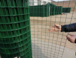 PVC Coated Euro Fence in Good Quality pictures & photos