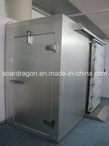 Cold Room Freezer Room with Hinge Door and Sliding Door pictures & photos