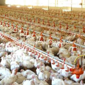 Automatic Poultry Plastic Nipple Drinker for Poultry House pictures & photos