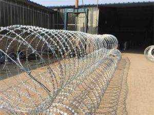 High Quality Hot Galv. Razor Barbed Security Wire pictures & photos