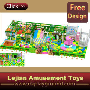 En1176 High Quality Luxury Indoor Playground (T1403-5) pictures & photos