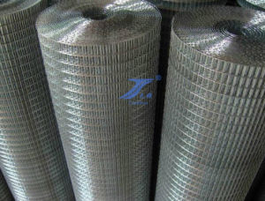 Galvanized Welded Wire Mesh (TS-L12) pictures & photos