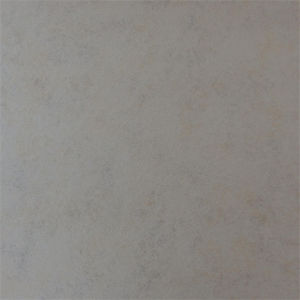 Foshan 600X600 Full Body Wall and Floor Rustic Porcelain Matte Tile GB6V060