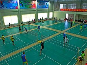 PVC Sports Badminton Flooring/Mats Indoor pictures & photos