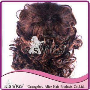 Kanekalon Synthetic Hair Wig Fashion Hair Wigs pictures & photos