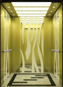Italy Technology Professional Hydraulic Home Villa Elevator/Lift (RLS-241) pictures & photos