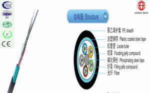 16 Core Single Mode Fiber Optic Cable pictures & photos