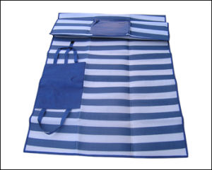 PP Woven Foldable Camping Mat for Promotion pictures & photos