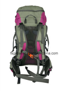 Fashion Waterproof Nylon Outdoor Camping Travelling Sports Hiking Backpack pictures & photos