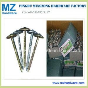 E. Galvanised Umbrella Head Roofing Nail pictures & photos