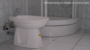 ISO Standard Size Container Toilet (shs-fp-sanitory006) pictures & photos