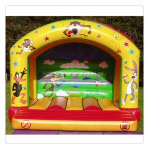 Factory Directly Supply Quality Inflatable Bouncers Hot Sale