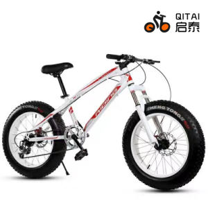 26 Size MTB Mountain Bicycle with 4.0 Tire, Fat Tyre Bicycle pictures & photos