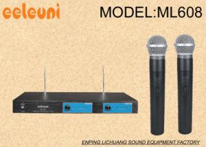 Hot Quartz Crystal VHF Dual Channels for Classroom, KTV, Speech Microphone