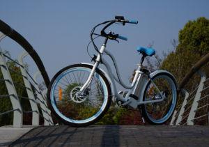 En15194 Green Power Beach Cruiser Electric Bike pictures & photos