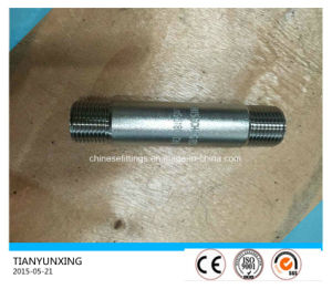 Bsp Sch40s Tbe Male Threaded Stainless Steel Fittings Pipe Nipple pictures & photos