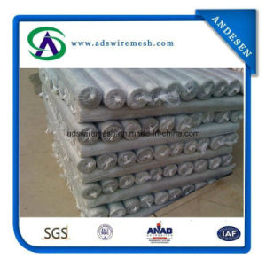 18X14mesh Aluminum Alloy Window Screen pictures & photos